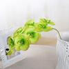 Orchidées Artificielles Haut de Gamme Vert Bouqueternel
