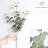 Branche Artificielle Eucalyptus en Branche Verte | Plante Artificielle | Bouqueternel