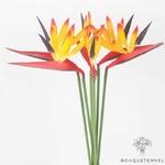 Fleurs Oiseau de Paradis Branches Artificielles | Branche Artificielle | Bouqueternel
