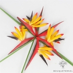 Fleur Oiseau de Paradis Branche Artificielle | Branche Artificielle | Bouqueternel