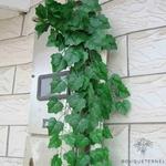 Guirlandes de Lierres Artificielles | Plante Artificielle | Branche Artificielle | Bouqueternel