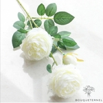 Très Grandes Fleurs Artificielles Pivoines Itoh Bartzella Blanche | Pivoines Artificielles | Bouqueternel