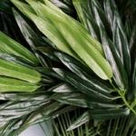 Tiges Artificielles de Bambou dExtérieur | Branche Artificielle | Plante Artificielle | Bouqueternel