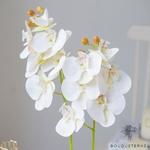 Tiges dOrchidées Artificielles | Fleurs Artificielles | Orchidées Artificielles | Bouqueternel