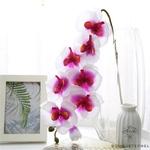 Grande Orchidée Artificielle | Fleurs Artificielles | Orchidées Artificielles | Bouqueternel