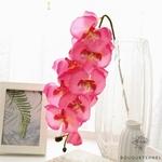 Grande Orchidée Artificielle Rose | Fleurs Artificielles | Orchidées Artificielles | Bouqueternel