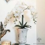 Grandes Orchidées Artificielles | Fleurs Artificielles | Orchidées Artificielles | Bouqueternel