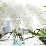 Grande Orchidées Artificielles | Fleurs Artificielles | Orchidées Artificielles | Bouqueternel