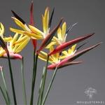 Strelitzia Nicolai Artificiel Rouges | Fleurs Artificielles | Fleurs Artificielles Oiseau de Paradis | Bouqueternel