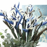 Plantes Artificielle Oiseau du Paradis   Fleurs Artificielles   Fleurs Artificielles Oiseau de Paradis   Bouqueternel