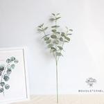 Eucalyptus en Branche | Branche Artificielle | Plante Artificielle | Bouqueternel