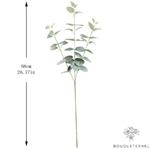 Dimensions Branche Artificielle Eucalyptus en Branche | Plante Artificielle | Bouqueternel