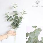 Branches Artificielles Eucalyptus en Branches | Plante Artificielle | Bouqueternel