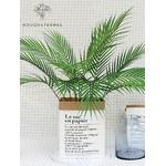 Feuilles de Palmier Artificielles en Branche | Plante Artificielle | Branche Artificielle l Bouqueternel