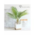 Feuilles de Palmier Artificielles | Plante Artificielle | Branche Artificielle l Bouqueternel