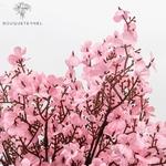 Branche de Cerisier Japonais en Fleurs | Branche Artificielle | Bouqueternel
