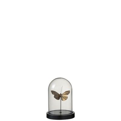 Papillon sous cloche