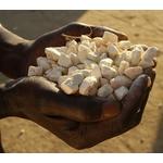 La poudre de baobab pour traiter les imperfections