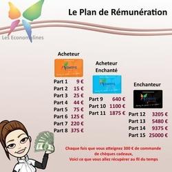 remuneration emrys