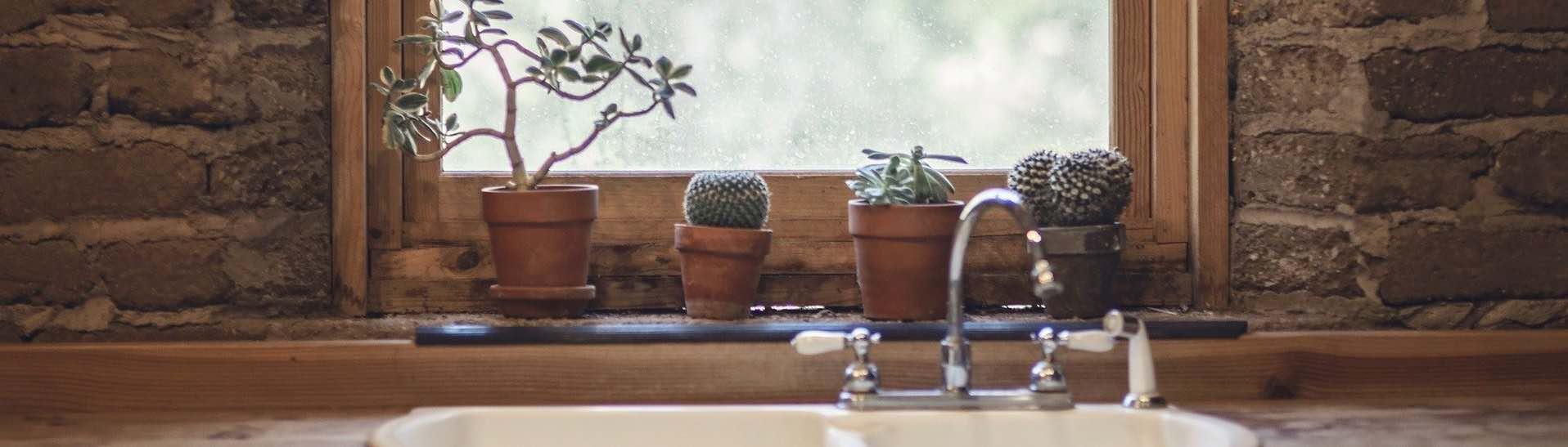 cuisine avec des plantes et un robinet d eau