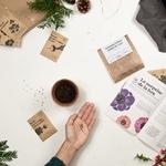 Graines de fleurs et aromates dans la box jardinage