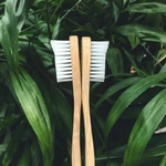 brosse-a-dent-biodegradable-bambou