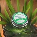 dentifrice solide naturel à la menthe posé sur une plante