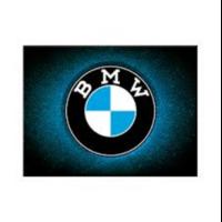 Magnet logo BMW 8 x 6