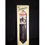 kawasaki thermomètre