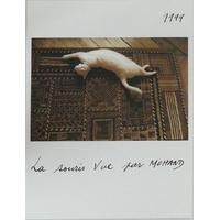 La souris vue par Mohand - 1999