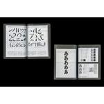 kanji-kana-bline-a-la-fenetre-catalogue-06-1200x800-q92