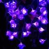 Guirlande lumineuse led ROSE
