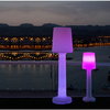 LAMPE SUR PIED SANS FIL RECHARGEABLE CARMEN 165