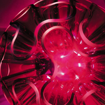 lampe-lumineuse-led-coral design vendue sur www-deco-lumineuse.fr