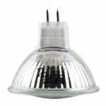 ampoule-led-12v-24-leds-3-vendue-sur-www.deco-lumineuse.fr