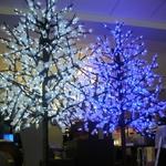 arbre-peupliers-lumineux-a-led-190-m