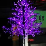 arbre-peupliers-lumineux-a-led-250-m