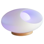 fontaine lumineuse led design interieur emba