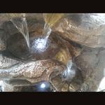 fontaine led exterieur xxl grande niagara
