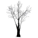 arbre lumineux led exterieur cerisier 180cm 336 fleurs led rvb