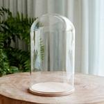 guirlande led 50 micro led et grande cloche verre vendue sur deco-lumineuse.fr