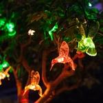 guirlande lumineuse led 10 colibris rvb solaire vendue sur deco-lumineuse.fr