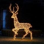 grand renne lumineux de noël en rotin vendu sur deco-lumineuse.fr