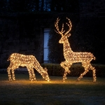 grand renne lumineux led de noël en rotin vendu sur deco-lumineuse.fr