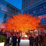 guirlande lumineuse led serie exterieure orange coeur raccordable 10m 80 m 800 led vendue sur deco-lumineuse.fr