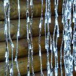 branche lumineuse led noël saule pleureur 200 cm 736 led blanc froid vendue sur deco-lumineuse.fr