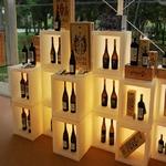 présentoir bouteilles lumineux led alcool bière vin vendu sur deco-lumineuse.fr