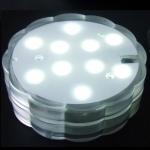 lampion-lumineux-10led02-blanche
