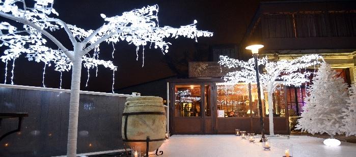 ficus led,ficus lumineux,ficus illuminé,arbre led,arbre lumineux,