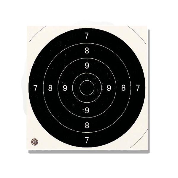 100 cibles de tir 21 x 21